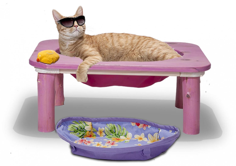 In the pink Cat hammock with Peedee