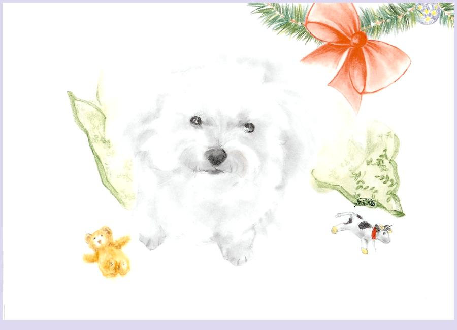 Daisy Christmas Card
